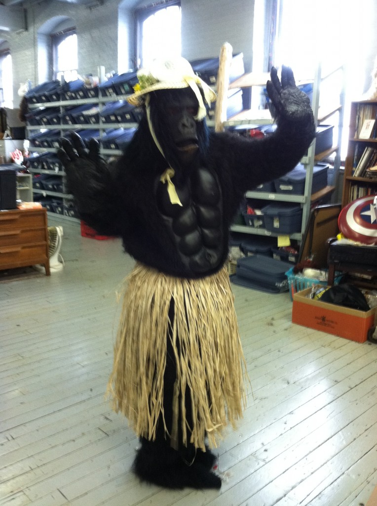 Gorilla in a grass skirt