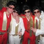 Elvis Group